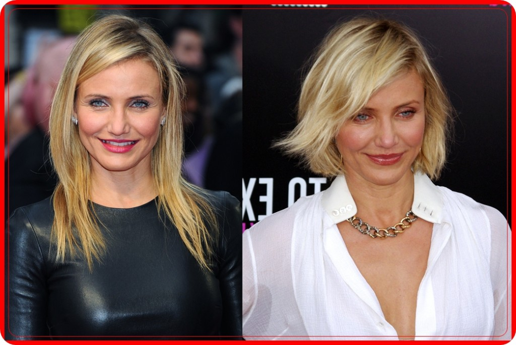 Cameron Diaz Nose Job Plastic Surgery before and After Pictures