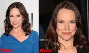 Barbara Hershey Plastic Surgery Before And After Filler, Facelift Photos