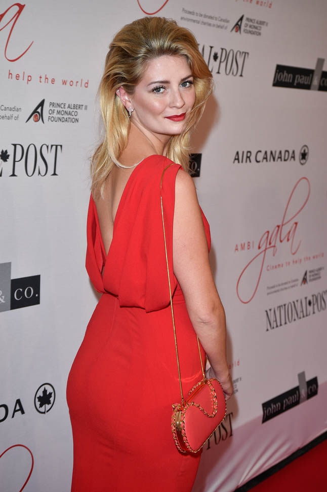 Mischa Barton Plastic Surgery Before And After Botox, Cosmetics Photos