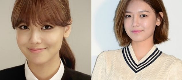 Sooyoung Plastic Surgery Before And After Photos