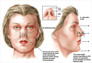 How Much Does A Nose Job Cost In NYC, NJ, Mexico