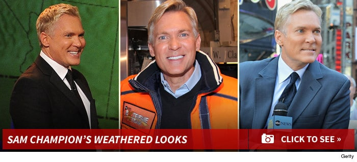 Sam Champion Plastic Surgery Before And After Photo